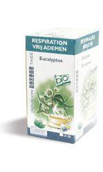 Bien-être Détente: Infusion eucalyptus (Respiration)