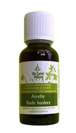 Animaux & Maison: Airelle (Vaccinium vitis idaea) bourgeon
