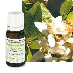 Beauté Hygiène: Néroli (Citrus aurantium ssp amara)