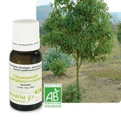 50 +: Ravintsara (Cinnamomum camphora ct cinéole)