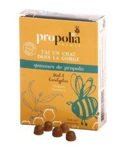 Bien-être Détente: Gommes de propolis miel-eucalyptus