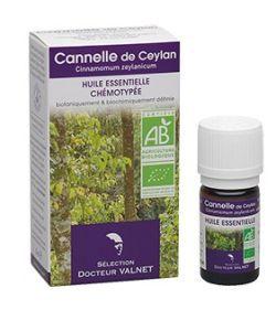 Thérapies naturelles: Cannelle