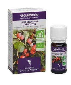 Thérapies naturelles: Gaulthérie