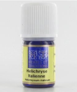 Thérapies naturelles: Helichryse italienne/Immortelle (Helichrysum italicum ssp serotinum)