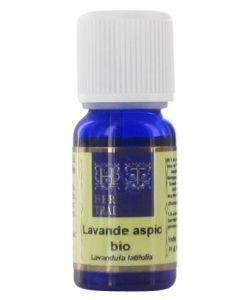 Thérapies naturelles: Lavande aspic (lavandula spica/lavandula latifolia)