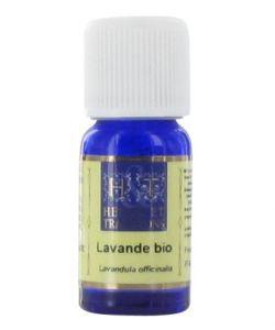 50 +: Lavande (Lavandula officinalis)