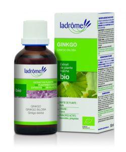 Thérapies naturelles: Ginkgo - extrait de plante fraîche