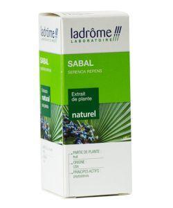 Thérapies naturelles: Sabal - extrait de plante fraîche