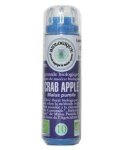 Fleurs de Bach: Pomme sauvage/Crab apple (n°10) SANS ALCOOL