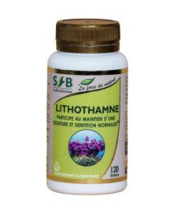 Thérapies naturelles: Lithothamne