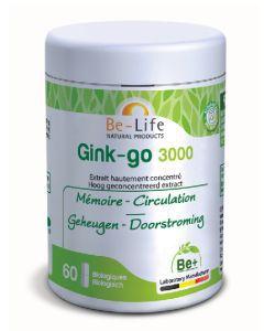 Thérapies naturelles: Gink-go 3000