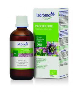 Thérapies naturelles: Passiflore - extrait de plante fraîche