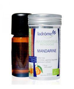 50 +: Mandarine (Citrus reticulata)