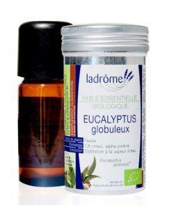 Beauté Hygiène: Eucalyptus globuleux (Eucalyptus globulus)