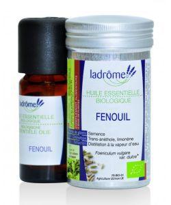 50 +: Fenouil (Foeniculum vulgare var. Dulce)