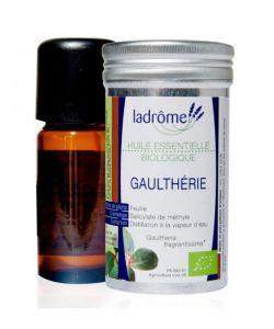 Thérapies naturelles: Gaulthérie (Gaultheria fragrantissima)