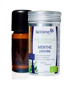 Beauté Hygiène: Menthe poivré (Mentha x piperita)