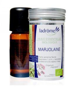 50 +: Marjolaine (Origanum majorana)