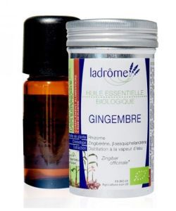 50 +: Gingembre (Zingiber officinale)