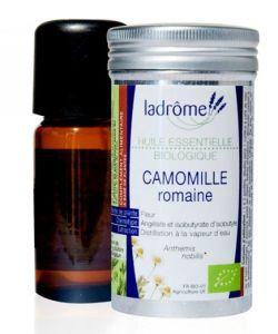 Beauté Hygiène: Camomille romaine (Anthemis nobilis)
