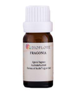 Bien-être Détente: Fragonia