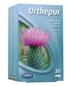 50 +: Orthepur