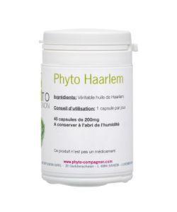 Animaux & Maison: Phyto Haarlem