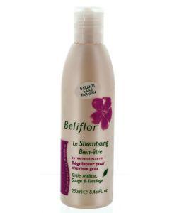 Beauté Hygiène: Shampooing Régulateur - Cheveux Gras