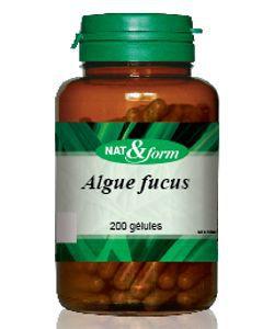 Thérapies naturelles: Algue Fucus