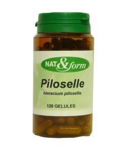 Thérapies naturelles: Piloselle