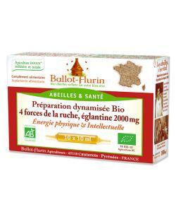 Bien-être Détente: Préparation Dynamisée 4 forces de la ruche