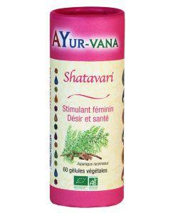 Thérapies naturelles: Shatavari
