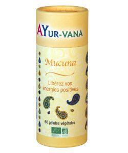 Thérapies naturelles: Mucuna