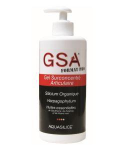 Les incontournables: GSA Format Pro - Gel Surconcentré Articulaire