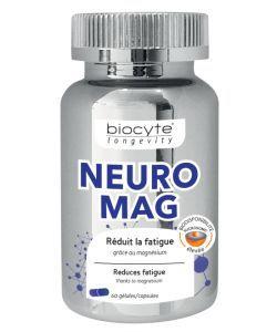 50 +: NeuroMag