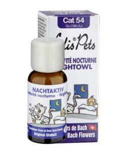 Thérapies naturelles: L\'activité nocturne - Cat 54 Globuli