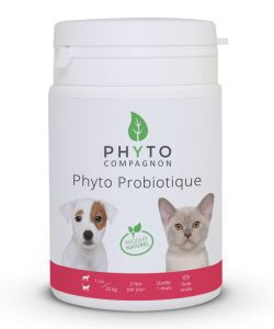 Animaux & Maison: Phyto Probiotique - DLUO 07/2017