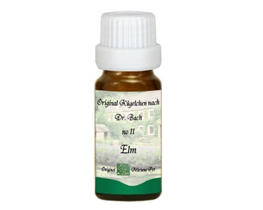 Elm Elm Bach Flower Remedies For Animals Pet Miriana