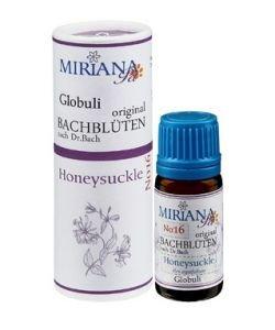 Chèvrefeuille - Honeysuckle 16 Fleur de Bach pour animaux, 10g