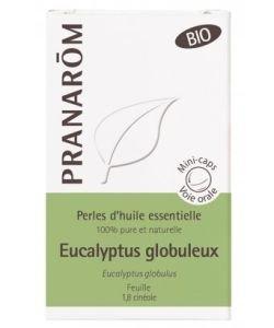 Eucalyptus globuleux feuilles- Perles d'huile essentielle BIO, 60perles