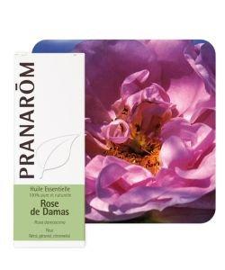 Rose de Damas (Rosa damascena), 5ml