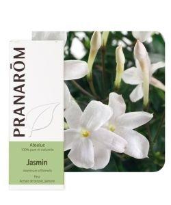 Jasmin - absolue (Jasminum officinalis)