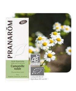Camomille noble (Chamaemelum nobile)