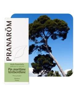 Pin maritime - térébenthine (Pinus pinaster), 10ml