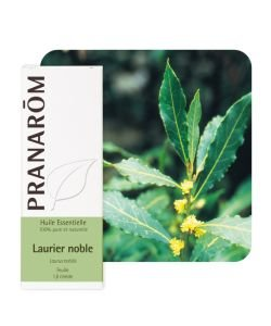 Laurier noble (Laurus nobilis), 5 ml