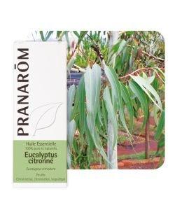 Eucalyptus citronné (Eucalyptus citriodora), 10ml