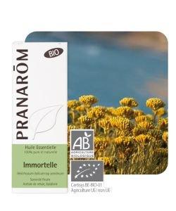 Immortelle (Helichrysum italicum)