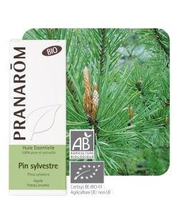 Pin sylvestre (Pinus Sylvestris) - Huile essentielle