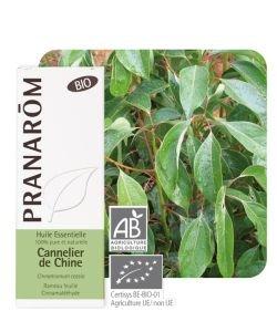 Cannelier de Chine (Cinnamomum cassia) BIO, 10ml