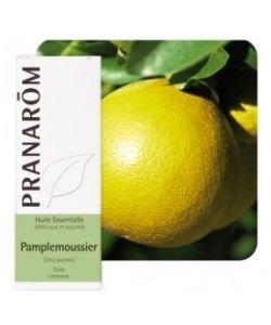 Pamplemoussier (Citrus paradisi), 10ml